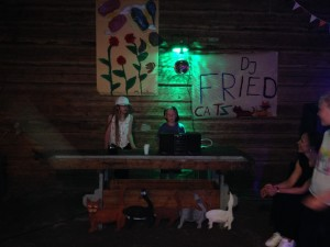 DJ Fried Cats